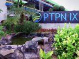 Lowongan Kerja BUMN Terbaru PTPN IX, Ada 3 Posisi, Cek Kualifikasinya
